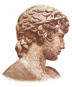 Antinous Sepia