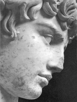 Antinous visage nb