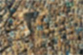 Ghardaia vertical.jpg