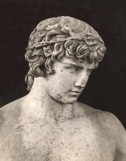 Antinous buste