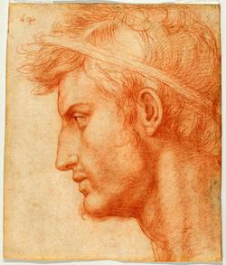 1500 Andrea del Sarto