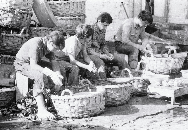 pêcheurs qui décortiquent
