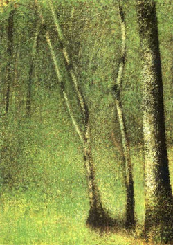 1882_Bois_à_Pontaubert
