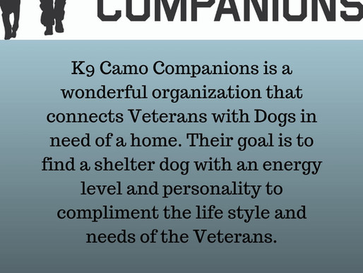 Charity of the Month - K9 Camo Companions!