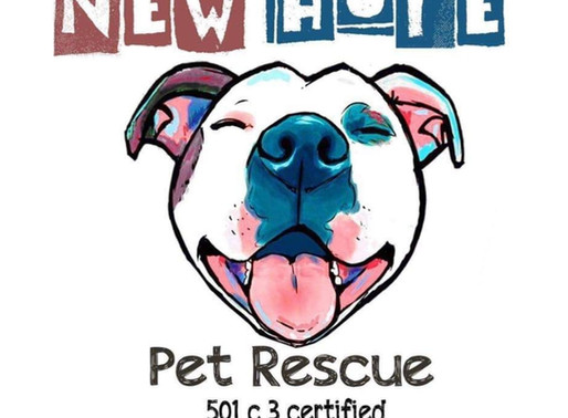 May Charity of the Month - New Hope Pet Rescue!