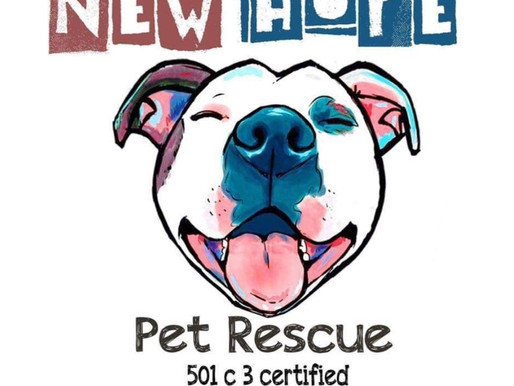 May Charity of the Month - New Hope Pet Rescue