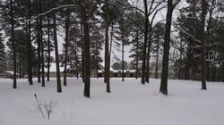 WinterAbbey