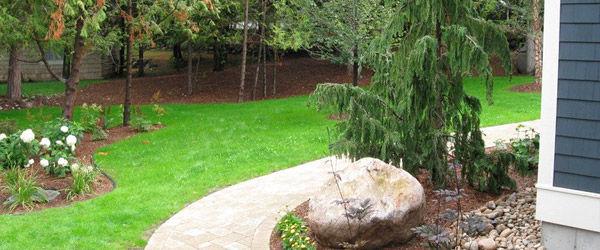 Beautiful backyard with Sludgehammer