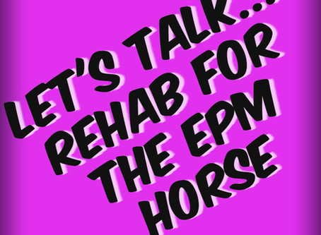 Let's Talk... Rehab for the EPM Horse