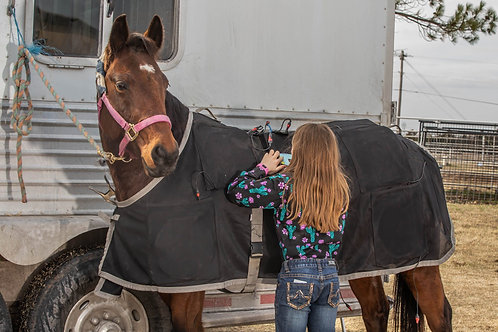 Bring a kid 18 and under to observe- Certified Equine Rehab Therapist