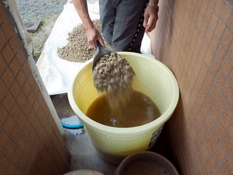 「大原粘土」づくり始まる