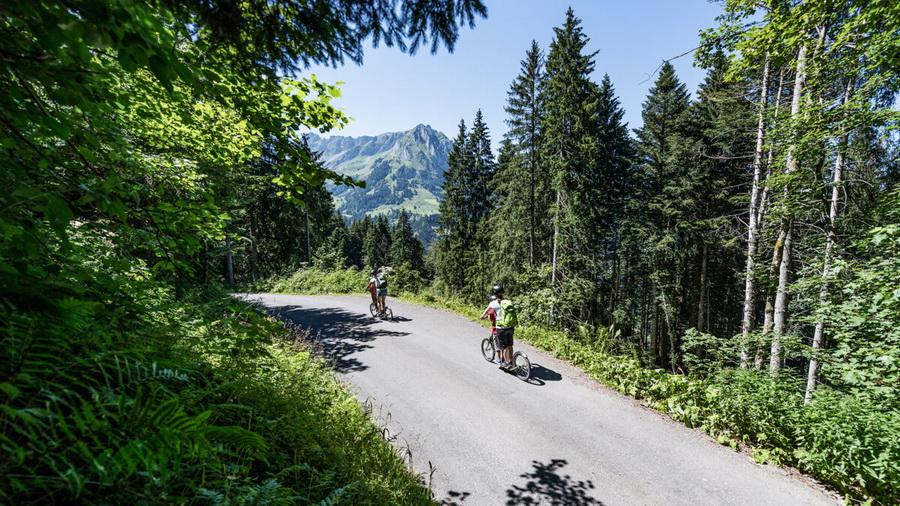 Trotti Bike -2-