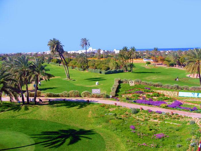Golfplatz Djerba 117