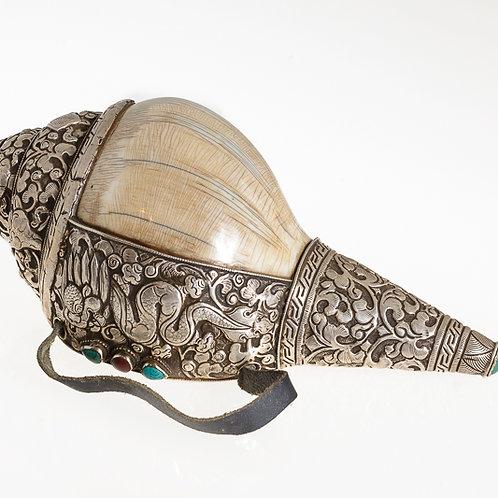 Antique Tibetan Conch