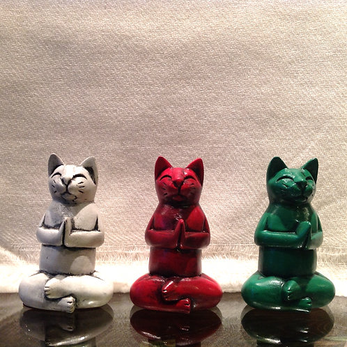 Lotus chat en prière (p)/Lotus praying cat (s)
