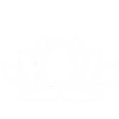 lotus-logo_edited.png