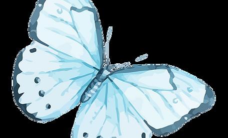 Papillon Aquarelle 12