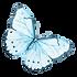Watercolor Butterfly 12