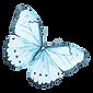 Vattenfärg fjäril 12