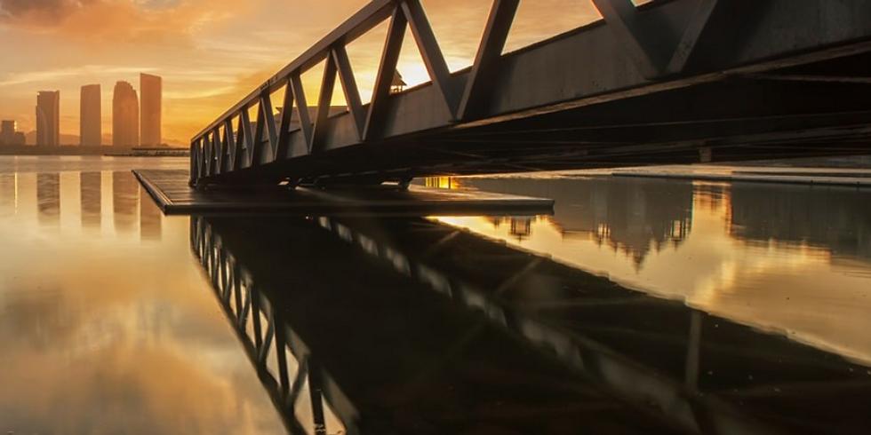 Phoenix Bridge Webinar