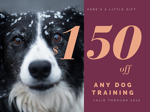 Receive $150 worth of Dog Training Services