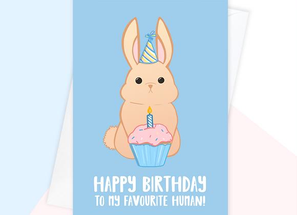 rabbit birthday card, birthday card from the rabbit