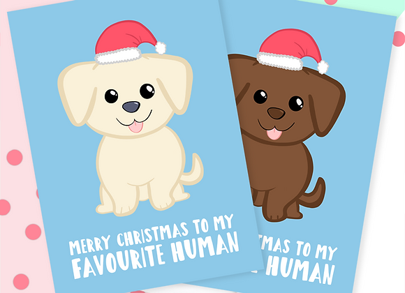 Christmas Card From The Labrador