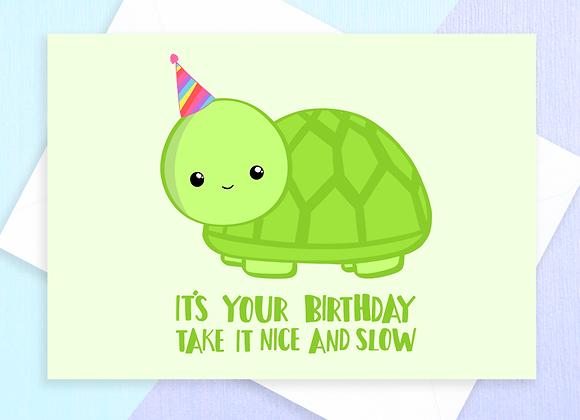 funny turtle birthday card, birthday card for turtle owner, birthday card for tortoise owner