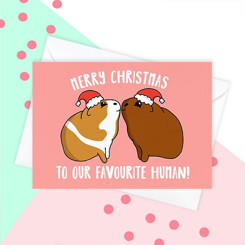 Christmas Card From The Guinea Pig