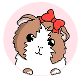 guinea-pig-button.png