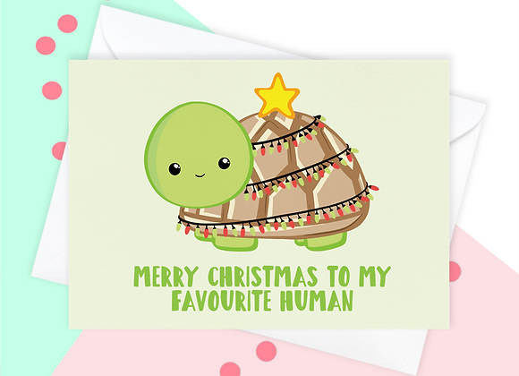 Christmas Card From The Tortoise