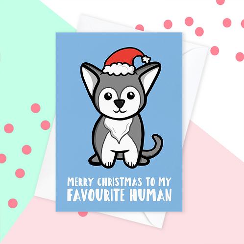 Christmas Card From The Husky