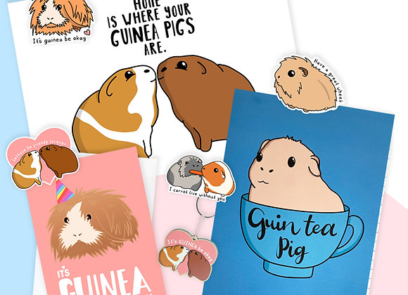 Guinea Pig Gift Bundle, Birthday Gift For Guinea Pig Owner