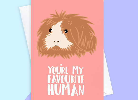 From The Guinea Pig Card