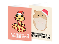 FromPetsXmas.PNG
