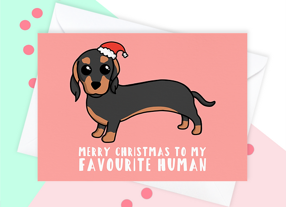 Christmas Card From The Sausage Dog