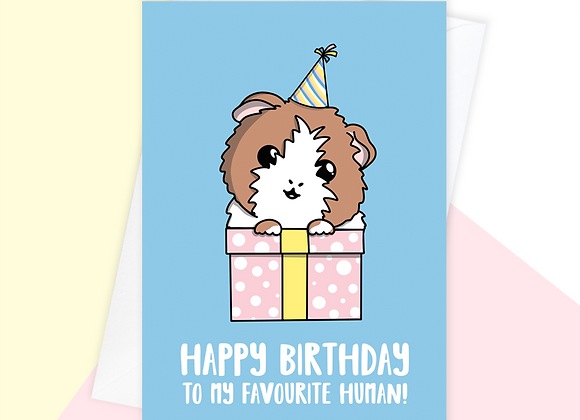 guinea pig birthday card, birthday card from the guinea pig