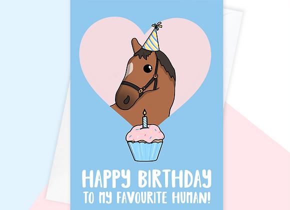 horse birthday card, birthday card from the horse