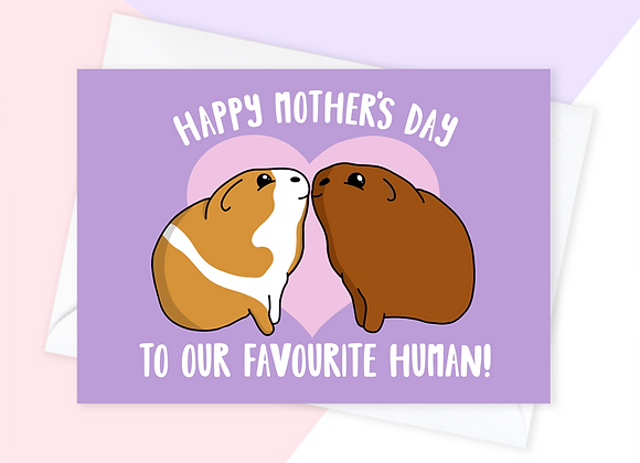 Mother's Day Card From Guinea Pig