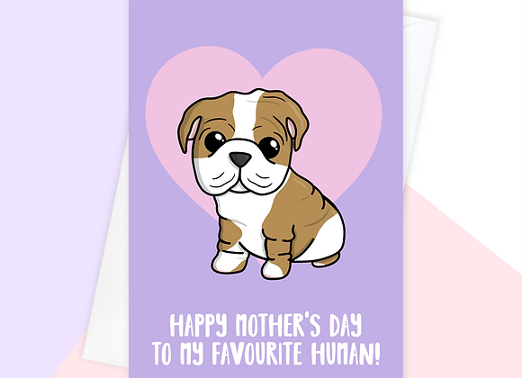 English bulldog Mother's Day card, Mother's Day card from english bulldog