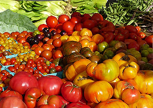 tomatoesand greens_180DPI.jpg