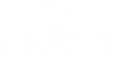 Caseys-logo_white.png