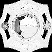 wffd_logo-white.png