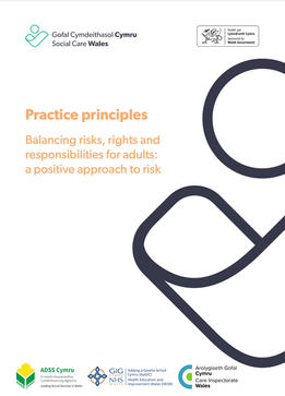 Practice Principles.png