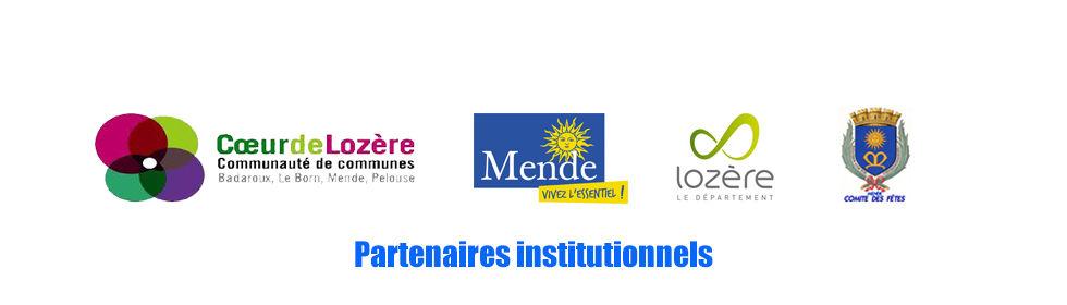 Partenaires institutionnels.jpg