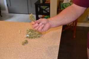 Using Marijuana to Regulate Emotions