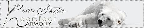 PS-Banner.jpg