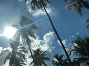 Presencia en El Caribe
