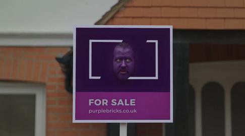 Purple Brick Promo