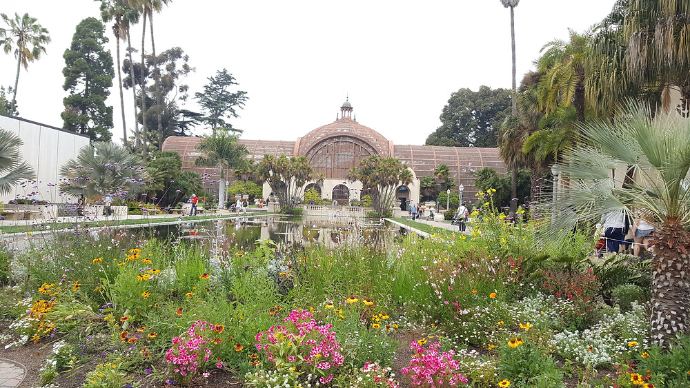 Balboa park Botanical Garden and Lily Pond.